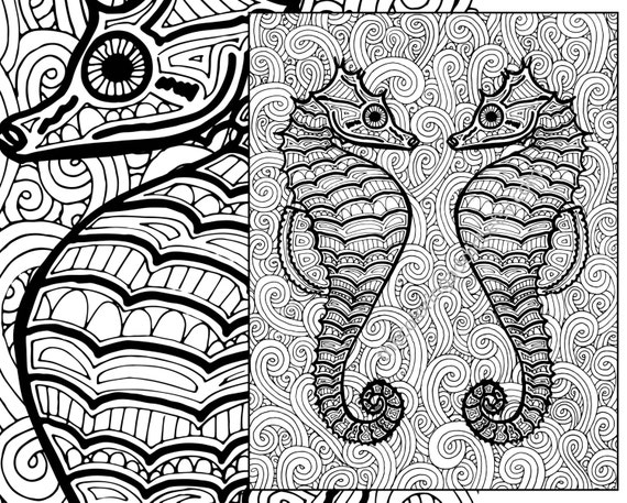 seahorse coloring page adult coloring sheet ocean colouring sheet pdf adult colouring book printable sea coloring digital coloring page - Seahorse Coloring Page