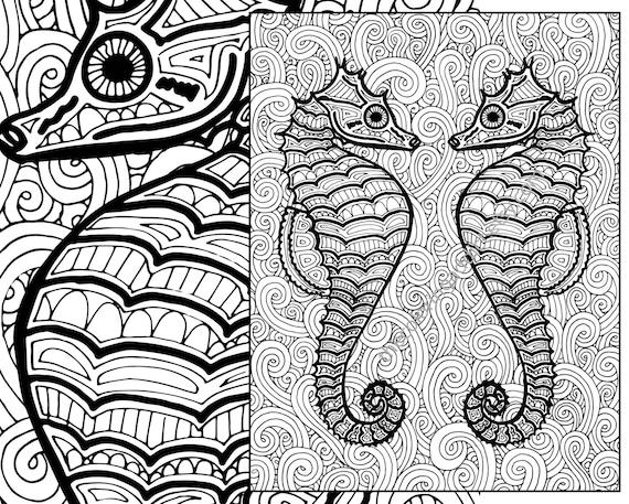 Seahorse Coloring Page, Adult Coloring Sheet, Ocean Colouring Sheet Pdf,  Adult Colouring Book, Printable Sea Coloring, Digital Coloring Page