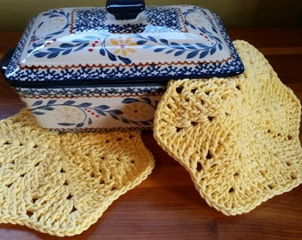 Set of Two Adorable Homemade Dishcloths