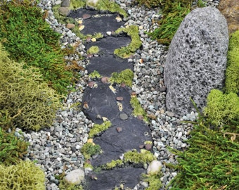 Fiddlehead Fairy Slate/Moss Path