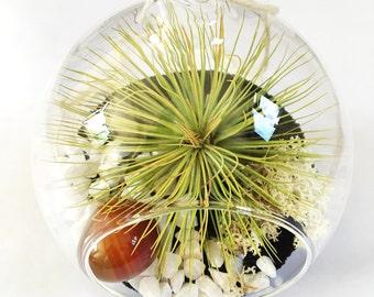 Crystal Air Plant Terrarium Tillandsia Kit (in fishbowl vase OR hanging globe)~ personalised gift leo birthstone birthday customise planter