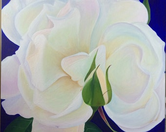 White Rose and Rosebud in Soft Pink