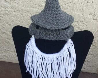 Dog Gandalf Hat