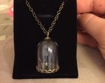 Real Dandelion Seed In Glass Wishing Bottle Necklace Pendant Chain
