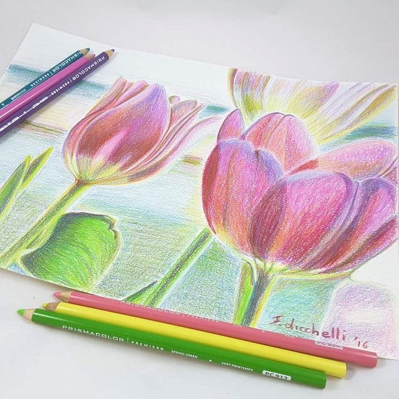"Pink tulips, drawing, original, one of a kind (OOAK) - colored pencils on paper - ""Tulips"" - 30x21 cm./11,8x8,3 inc."
