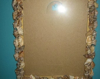 "Wall Hanging Shells Picture Frame for a 8"" X 10"" Photo"