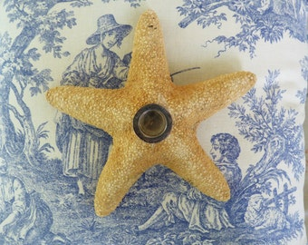 """Pair of Philmore Starfish Candleholders with Sterling Silver Accent - 9"""""""