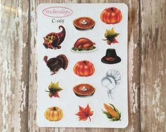 Thanksgiving Stickers, Turkey Stickers, Pumpkin Stickers, Planner Stickers,  Holiday Stickers, C-165.