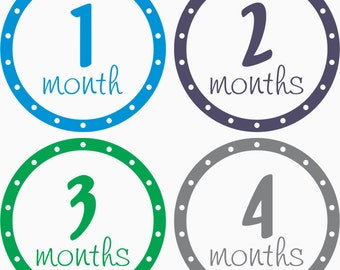 Monthly Baby Stickers, Milestone Decals, Baby Girl, Baby Boy, Shower Gift, Baby Photo Props, Bodysuit Stickers