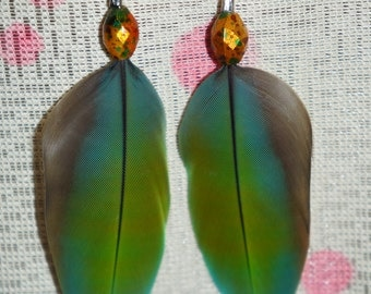 MD Macaw feather Earrings with bead