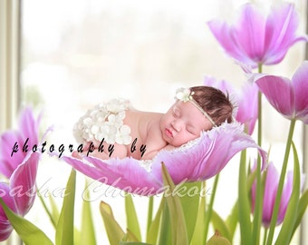 Digital backdrop newborn girl tulips