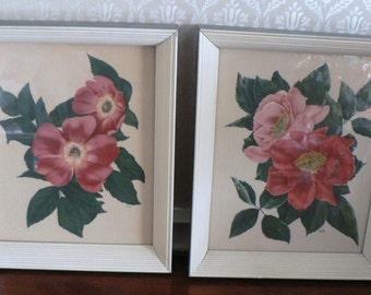 """Vintage Framed ROSE PRINTS Pictures Signed """"Eula"""" Set Of 2 Shabby Chic"""