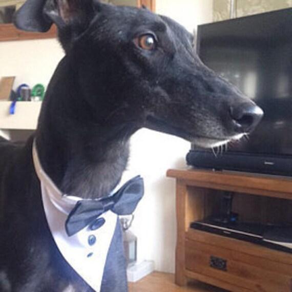 Dog Bow ties collars