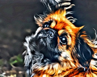 Yorkie - Print or Canvas