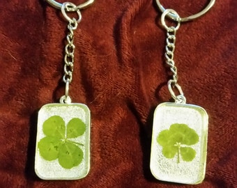 Two sided real clover keychain
