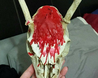 deer skull with melted candles