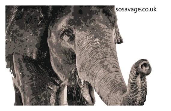 gentle elephant