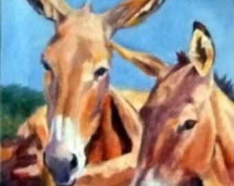 Sunshine Donkeys