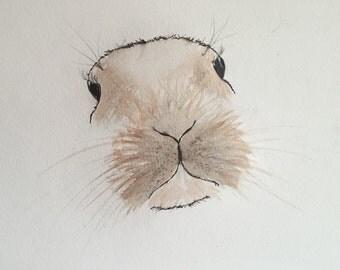 Print of my original watercolour Bunny