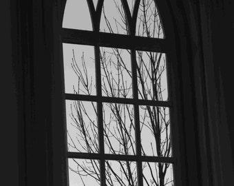 Church window, window, window with a view, window, Church window