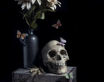 Memento Mori - Butterflies