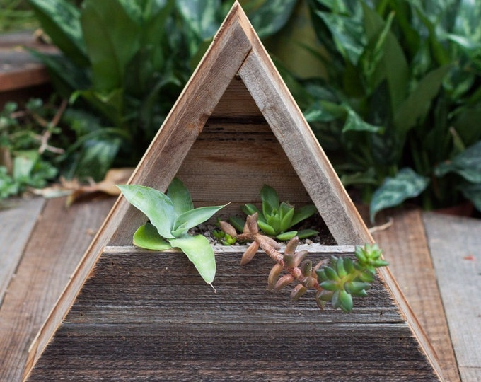 "12"" Triangle Pocket Planter"