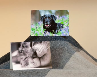 Pack of 5 A6 photo Notelets - Dog or Cat Design