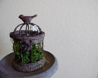 Little Bird Terrarium (aged brown)