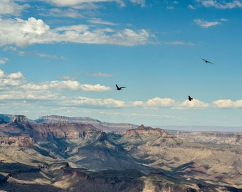 Grand canyon Arizona Fine art photography wanderlsut