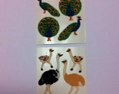 Fuzzy Peacock and Ostrich Vintage Sticker Set