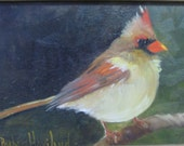 Female Cardinal Bird,oils,framed,Barbara Haviland-BarbsGarden Texas Artist