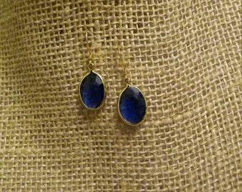 Dark Blue Jewel Earrings