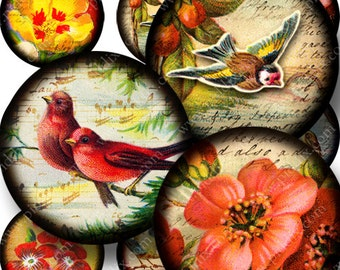 Bottle Cap Images, 1 inch Round Instant Download, Flora and Fauna digital collage sheet in 1 inch circles -- piddix 760