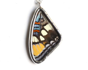 REAL Butterfly Wing Necklace. Arizona Sister Butterfly Necklace. Small Butterfly Pendant. Insect Jewelry. Wing Pendant. Butterfly Jewelry.