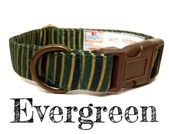 "Green Gold Striped Dog Collar - Organic Cotton - Antique Brass Hardware - ""Evergreen"""