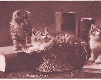 Vintage Cats and Books Postcard - Your 2 Favorite Things in one postcard 1907