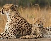 Custom Cheetah Locket