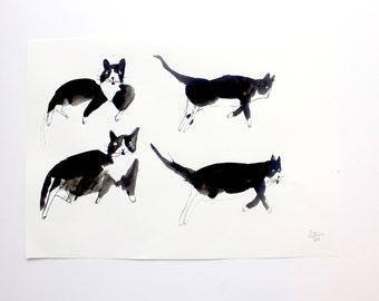 CAT || Original Illustration Painting
