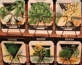 Vintage Lot of 1920's Seed Company Packages - Antique Seed Packet Lot - vegetable garden farm variety