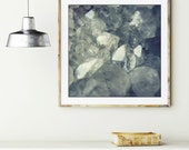 """Crystal photograph / mineral cluster / slate blue gray / nature photography / geology gem gemstone quartz crystal  """"From the Earth"""""""