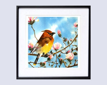 Bird Painting Watercolor Print Song bird wall decor Cedar Waxwing Nature art woodland creature wildlife painting red brown yellow blue