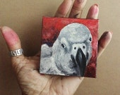 """Mini Oil Painting Bird African Grey Parrot Pet Portrait 3""""x 3"""" READY to SHIP"""