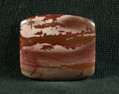Dead Camel Jasper Jasper freeform cabochon from Nevada 25x28x4mm