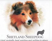 SHETLAND SHEEPDOG (Sheltie) with Phrase on One 18 x 22 inch Fabric Panel for Quilting and Sewing