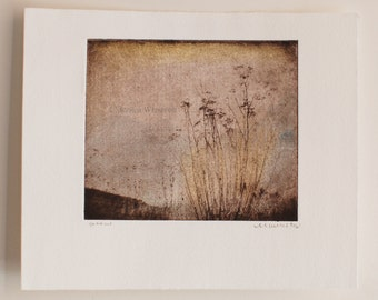 Yarrow-Original Hand Pulled Etching Intaglio Artwork Printmaking Landscape