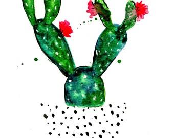 Flowering Cactus Print of Watercolor Illustration