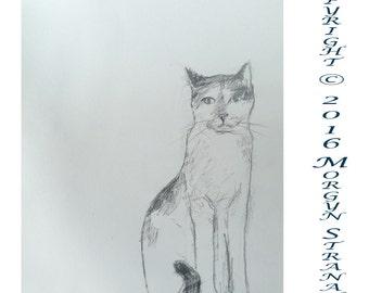 2016 Cat Series #12 (original OOAK drawing)