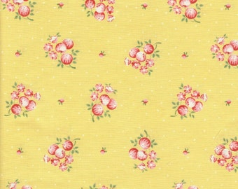 Cotton Fabric Quilter Quilt Quilting Cabbage Patch P&B Textiles Country Inn by Barbara Brandeburg Out of Production Rare One Yard Cut