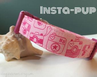 "Pink Cameras Adjustable Dog Collar - ""Snapshot"""