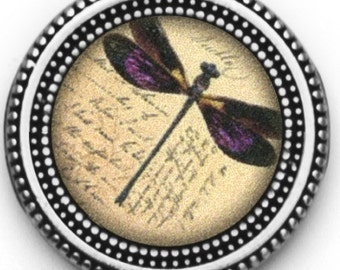 Magnet Button Dragonfly SET For Sweaters & Scarves
